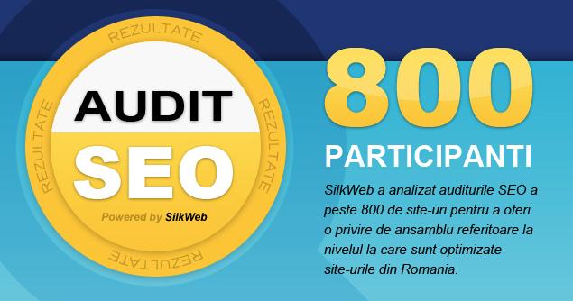 Infografic Rezultate Audit SEO SilkWeb