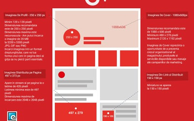 Am implementat Google + 1