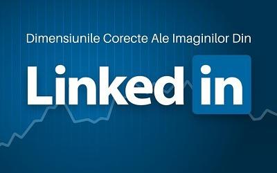 Dimensiunile Corecte Ale Imaginilor Din LinkedIn