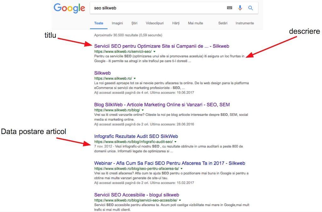 rezultate seo google